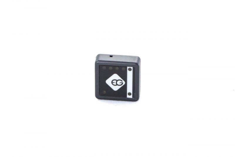 CENTRALKA EG ECU PAR SWITCH 1.1